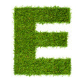 Letter E made of green grass isolated on white - PhotoDune Item for Sale
