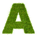 Letter A made of green grass isolated on white - PhotoDune Item for Sale