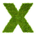 Letter X made of green grass isolated on white - PhotoDune Item for Sale