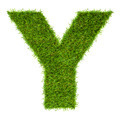 Letter Y made of green grass isolated on white - PhotoDune Item for Sale