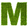 Letter M made of green grass isolated on white - PhotoDune Item for Sale