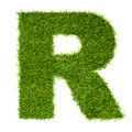 Letter R made of green grass isolated on white - PhotoDune Item for Sale