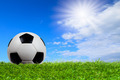 Soccer ball on grass with blue sky - PhotoDune Item for Sale