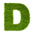 Letter D made of green grass isolated on white - PhotoDune Item for Sale