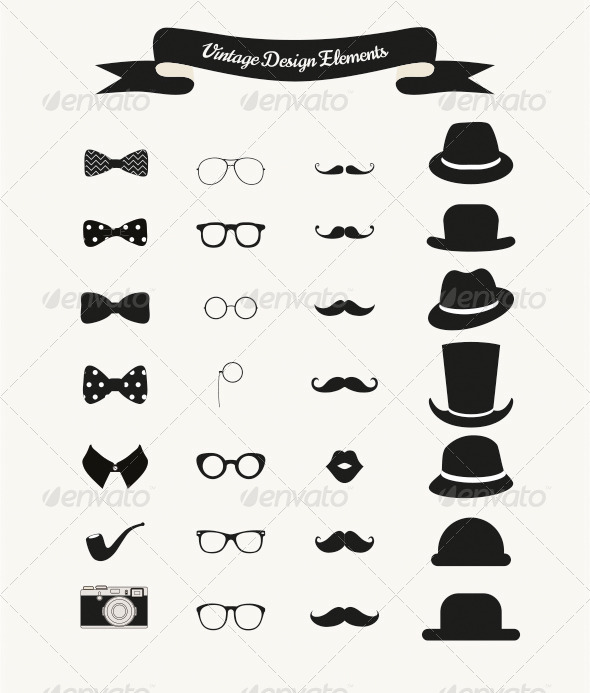 GraphicRiver Set of Vintage Black and White Hipster Icons 8019992