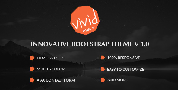 ThemeForest Vivid Bootstrap Parallax HTML Template 8025480
