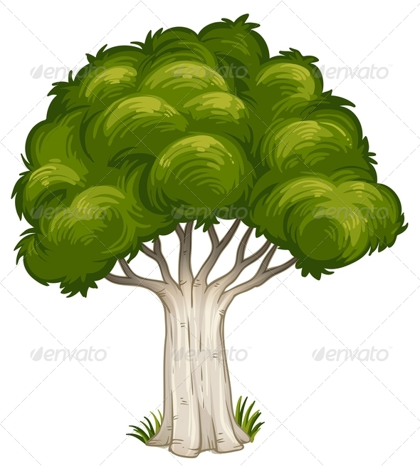 GraphicRiver Big Tree 8031860