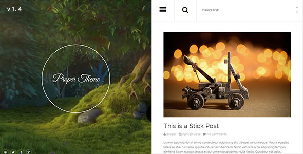 Proper Responsive WordPress Theme - Personal Blog / Magazine