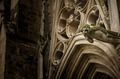 Cathedral of Carcassonne, France, gargoyle detail - PhotoDune Item for Sale