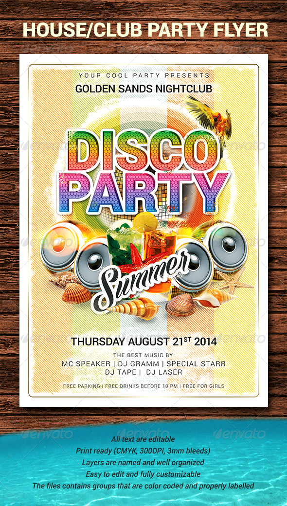 GraphicRiver Summer Beach Disco Party Flyer 8039207