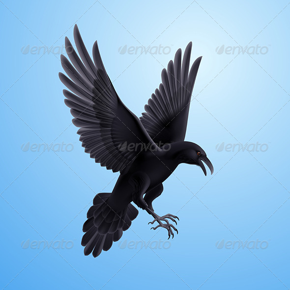 GraphicRiver Raven on Blue Background 8041008