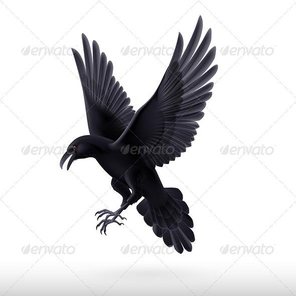 GraphicRiver Black Raven 8041210
