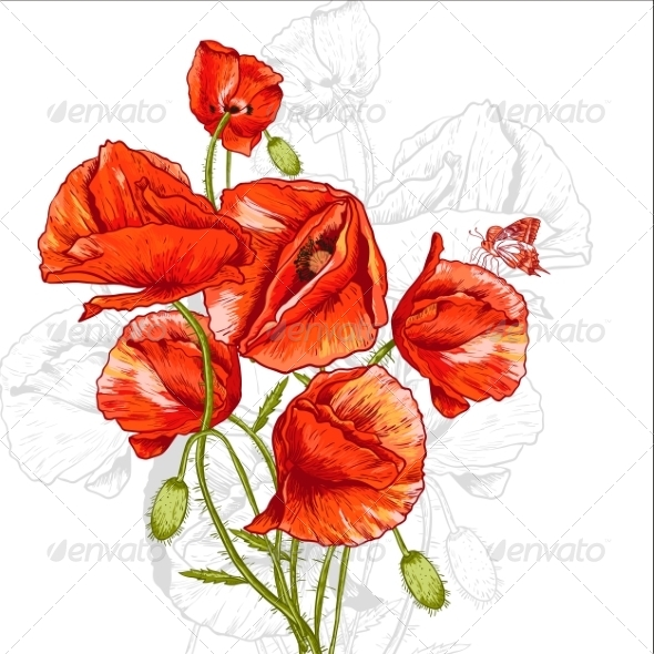 GraphicRiver Bunch of Red Poppy Illustration 8041799
