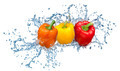Pepper in spray of water. - PhotoDune Item for Sale
