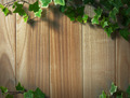 An Ivy plant on a table of hardwood - PhotoDune Item for Sale