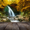forest waterfall - PhotoDune Item for Sale