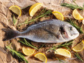 Raw dorado fish with rosemary and sea salt - PhotoDune Item for Sale
