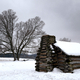 Cabin and Old Tree at Valley Forge National Park - PhotoDune Item for Sale