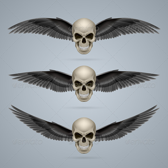 GraphicRiver Three Evil Skulls with Wings 8050622