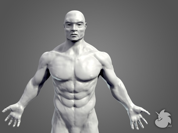 3DOcean Muscular Base Mesh 7992080