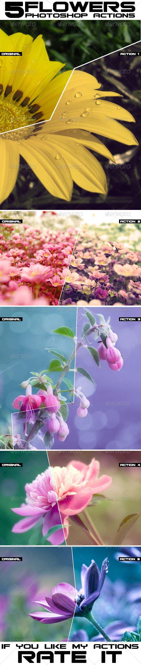 GraphicRiver 5 Flower Photoshop Actions 8055905