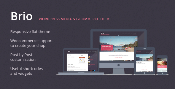 ThemeForest Brio Media & E-Commerce WordPress Theme 7012055