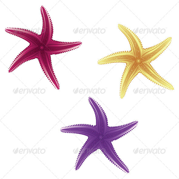 GraphicRiver Starfishes 8059322