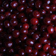 Background Of Cherries Piled - VideoHive Item for Sale