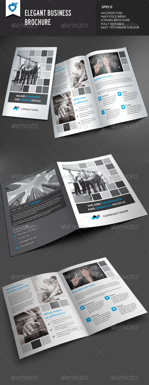 GraphicRiver Elegant Business Brochure 8062114