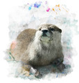 Watercolor Otter Portrait - PhotoDune Item for Sale