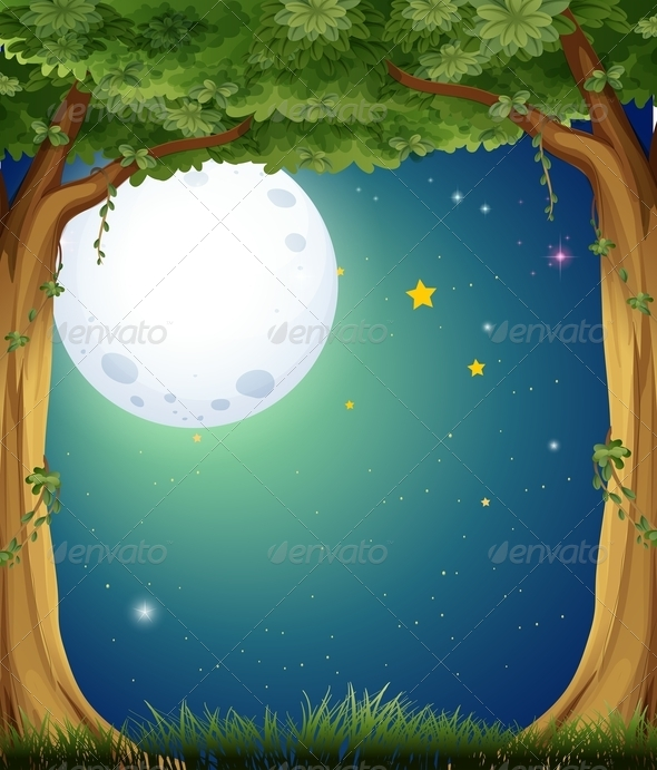 GraphicRiver A Forest and the Bright Moon 8064801