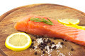Fresh salmon with spices - PhotoDune Item for Sale