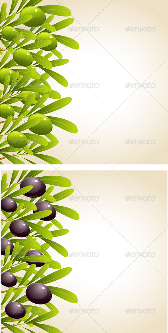 GraphicRiver Green and Black Olive Branches 8067446