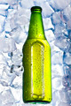 Beer is in ice - PhotoDune Item for Sale