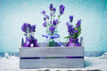 Lavender in bottles decor - PhotoDune Item for Sale