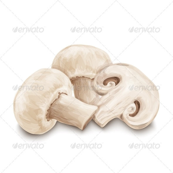 GraphicRiver Champignon Mushrooms Isolated 8070587