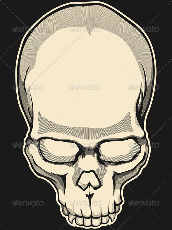 GraphicRiver Vintage Skull 8071628