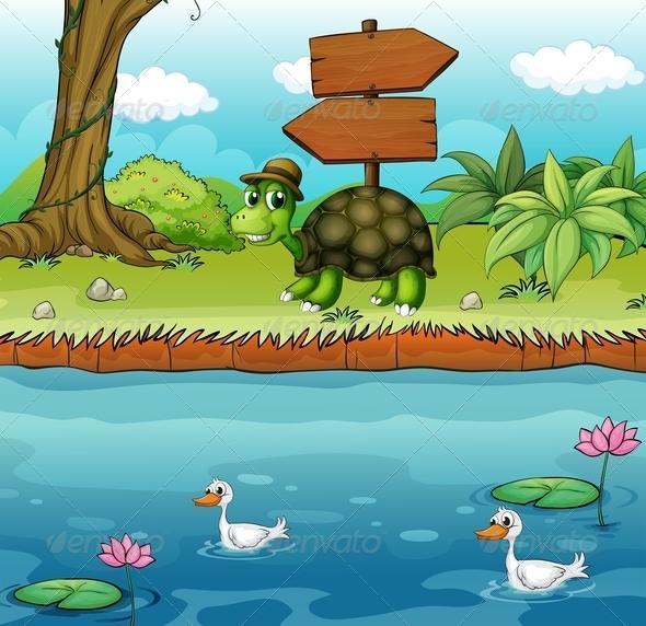 Turtle near River