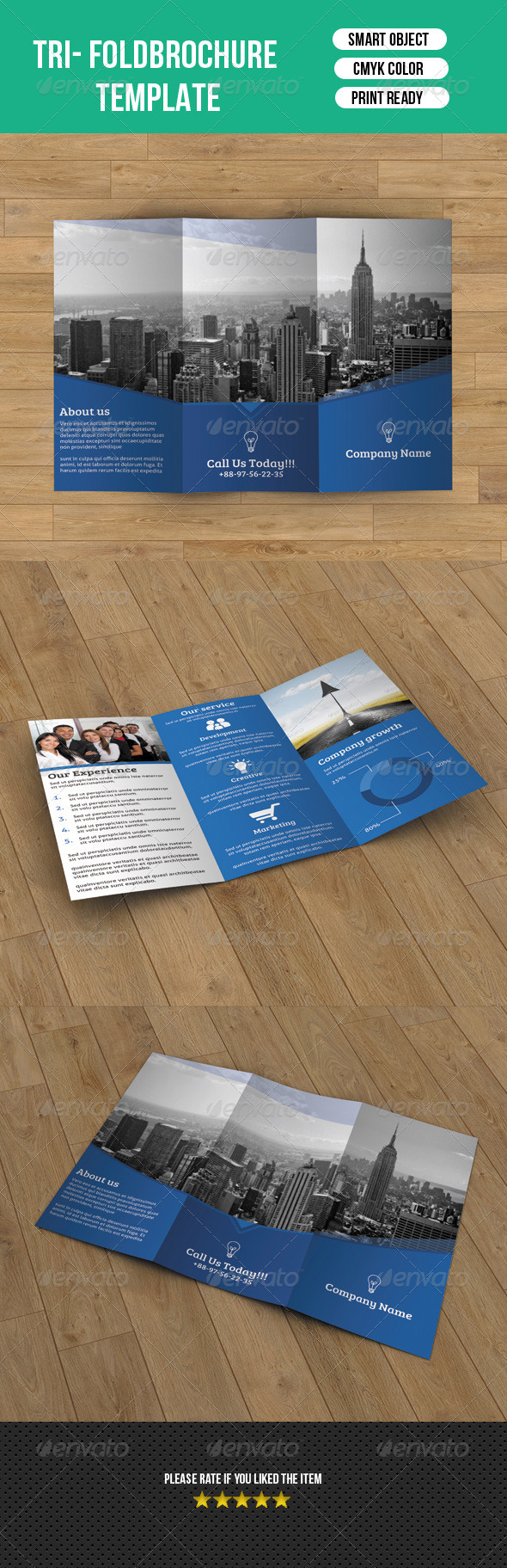 Corporate Trifold Template-V19