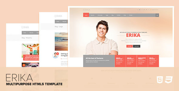 ThemeForest Erika Responsive Multipurpose HTML5 Template 8079178