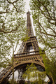 Eiffel Tower - PhotoDune Item for Sale
