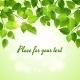 Spring Green Leaves Background - GraphicRiver Item for Sale