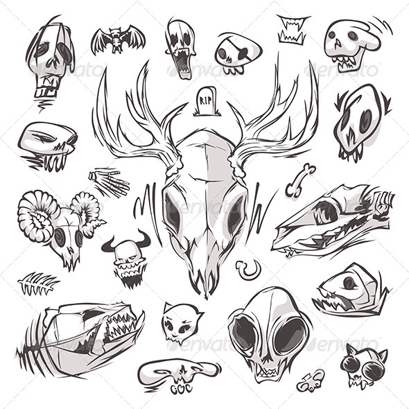 GraphicRiver Diverse Skulls and Bones Set 8076570
