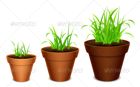 GraphicRiver Growing Grass 8084624