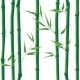 Seamless Bamboo - GraphicRiver Item for Sale