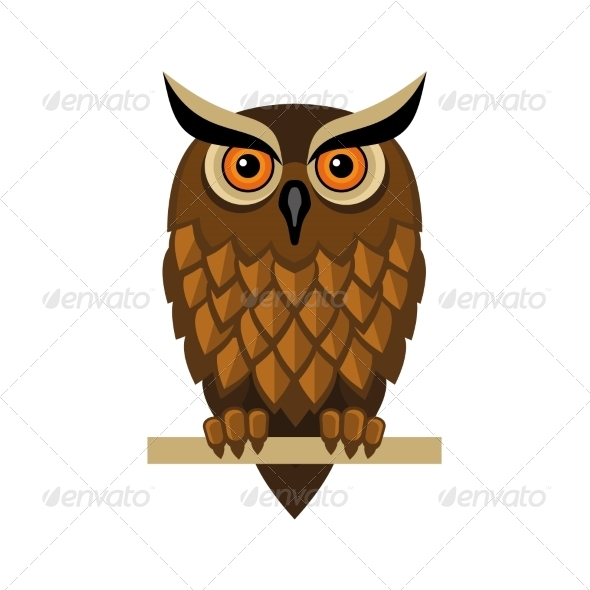 GraphicRiver Owl Isolated on White 8085105