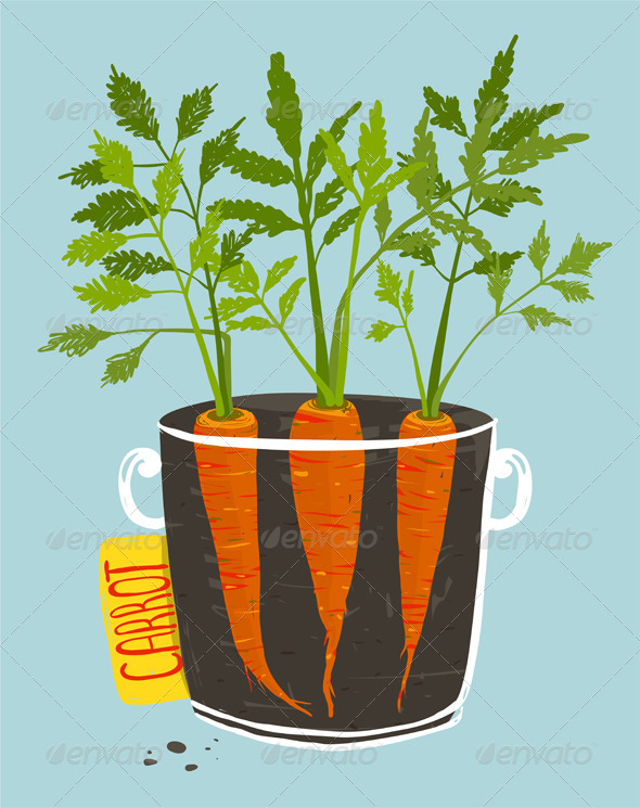 GraphicRiver Growing Carrots with Green Leafy Top in Mug 8085128