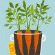 Growing Carrots with Green Leafy Top in Mug - GraphicRiver Item for Sale