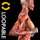 Sparking Arabesque - Full HD Loop - Pack 2 - 177
