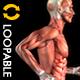Sparking Arabesque - Full HD Loop - Pack 2 - 176